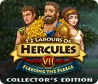 Hra 12 Labours of Hercules VII: Fleecing the Fleece Collector's Edition