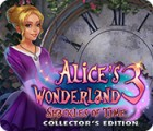 Hra Alice's Wonderland 3: Shackles of Time Collector's Edition