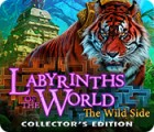 Hra Labyrinths of the World: The Wild Side Collector's Edition
