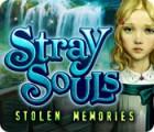 Hra Stray Souls: Stolen Memories